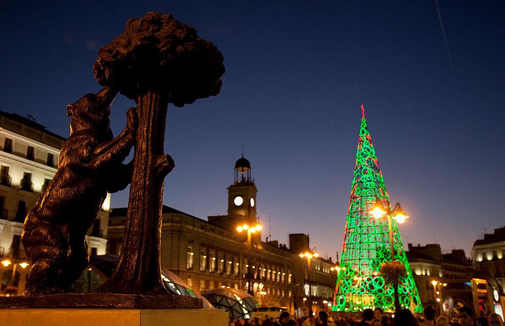 ¿Cuál es el árbol más común en España?