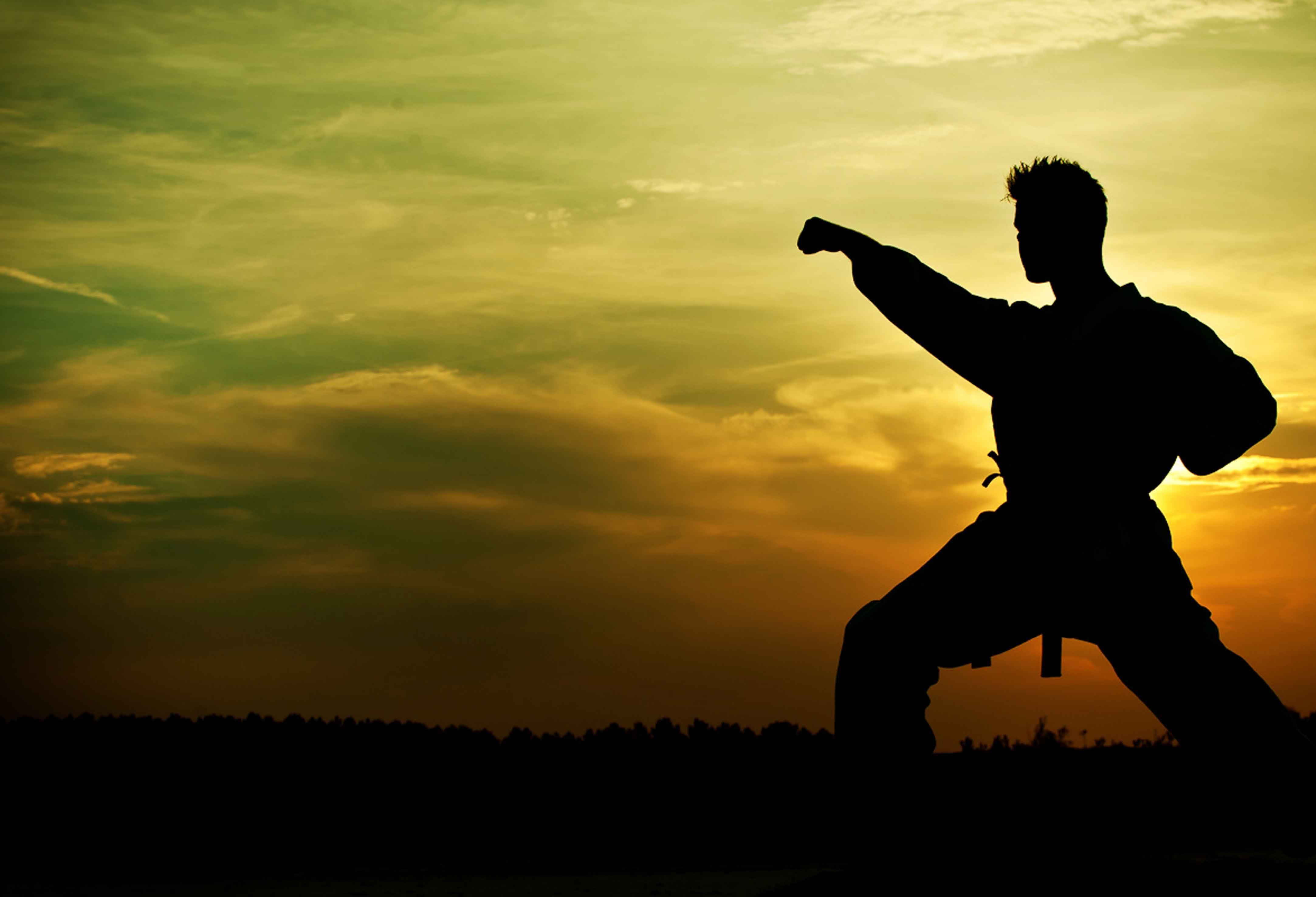 Tu forma de lucha preferida es...