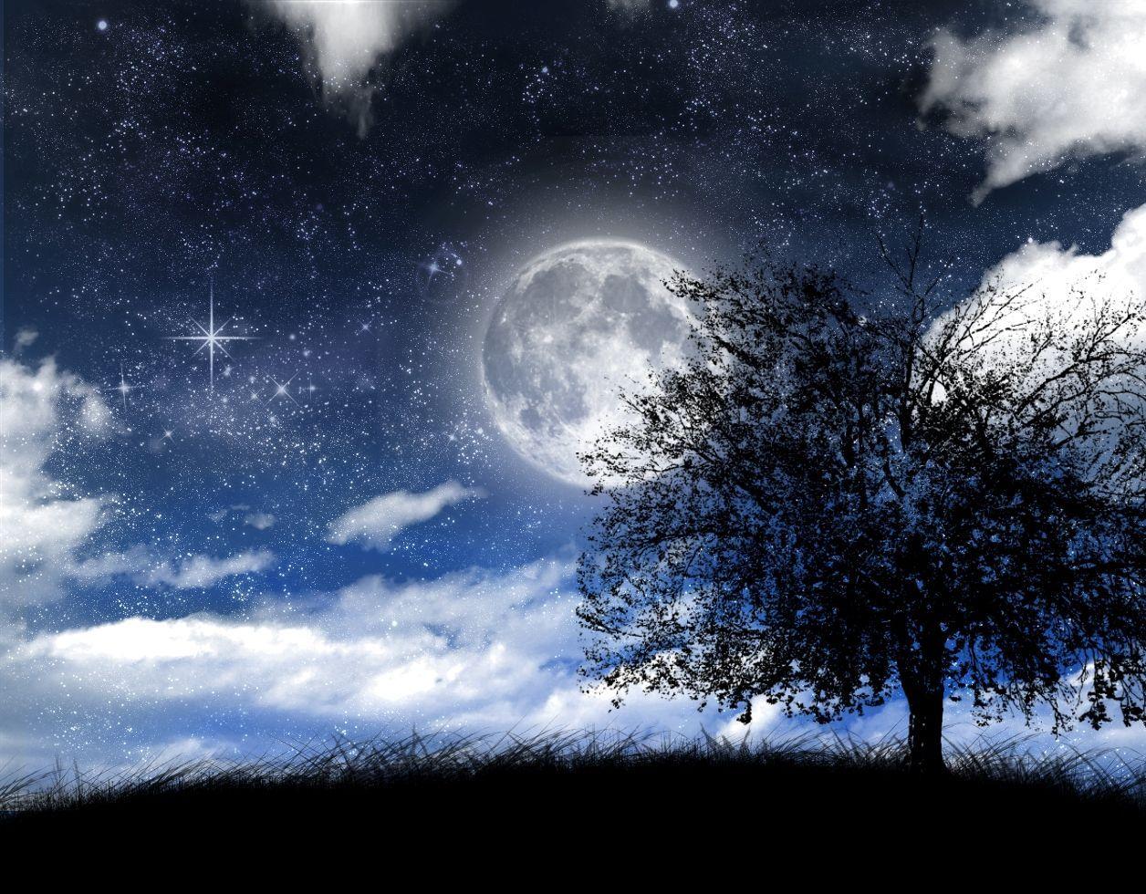 Se acerca la noche... ¿cómo la esperas?