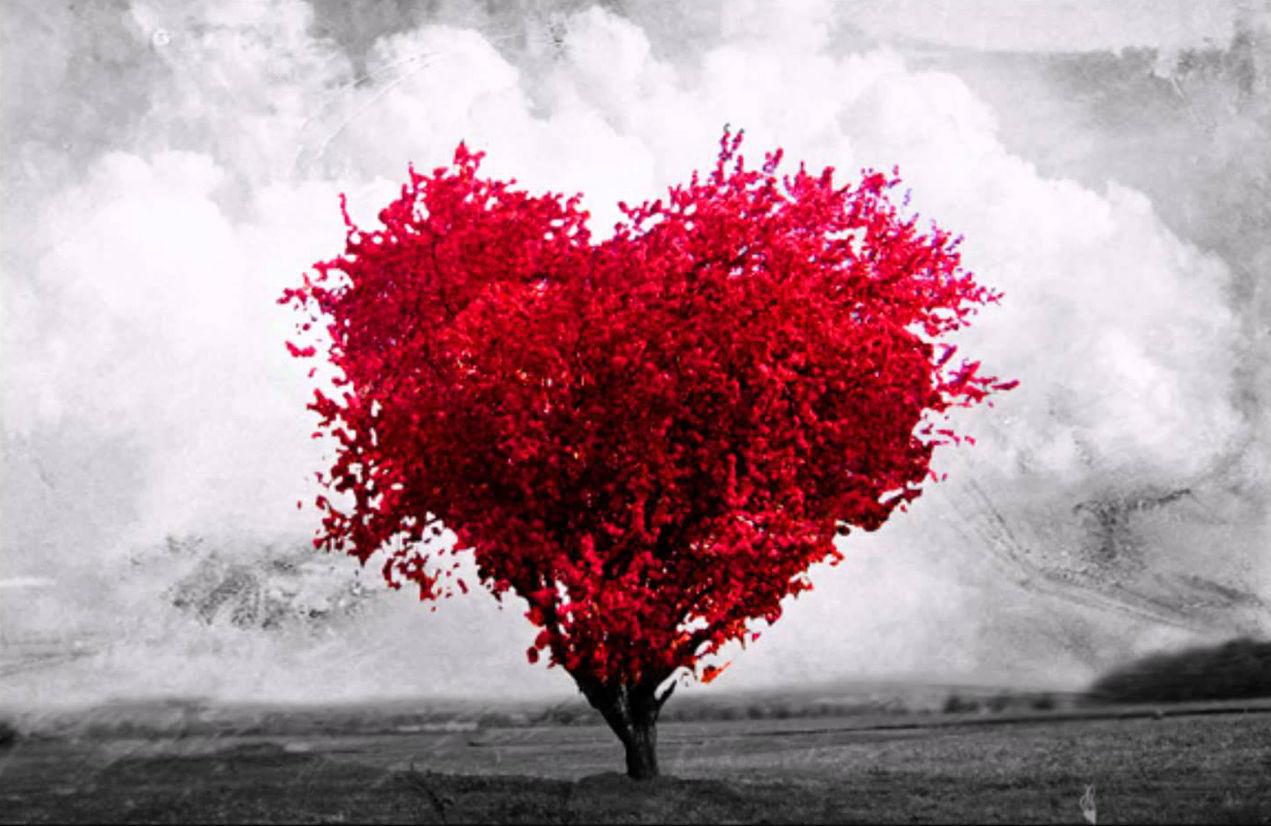 ¿Crees en el amor?