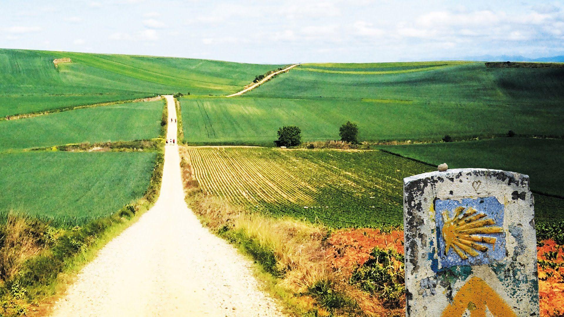 1878 - ¿Cuánto sabes del Camino de Santiago?