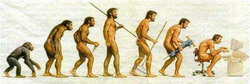 ¿Quién fundamentó la teoría de la evolución?