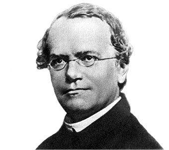 ¿Qué era Gregor Mendel?