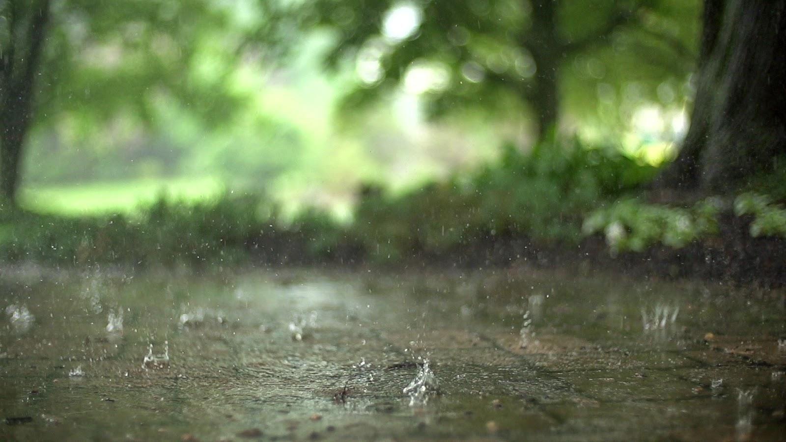 ¿Cuál es la velocidad máxima a la que puede caer una gota de lluvia?