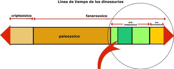 ¿En qué tres grandes períodos se desarrollan estos animales?