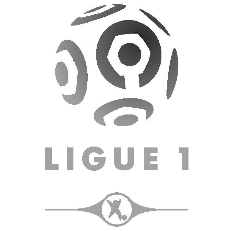 8462 - ¿Cuánto sabes de la Ligue 1?