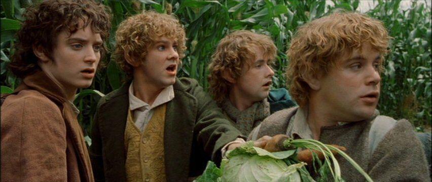 ¿Cuál de estos NO es una raza de Hobbit?