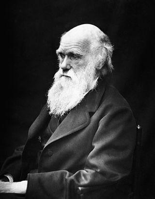 ¿Cuál eran el verdad los estudios de Charles Darwin, los que quiso darle su padre para que trabajara?