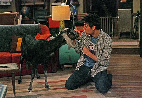 ¿En qué cumpleaños de Ted aparece la cabra?