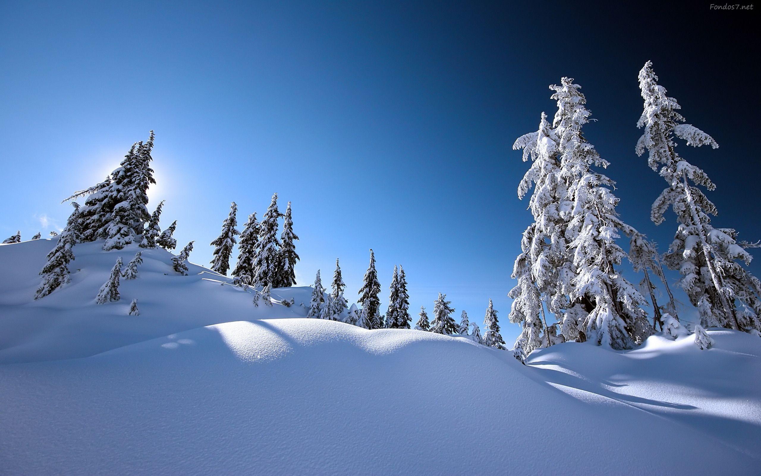 Si en Islandia hace frío... ¿Cuál es el lugar más frío de la Tierra?