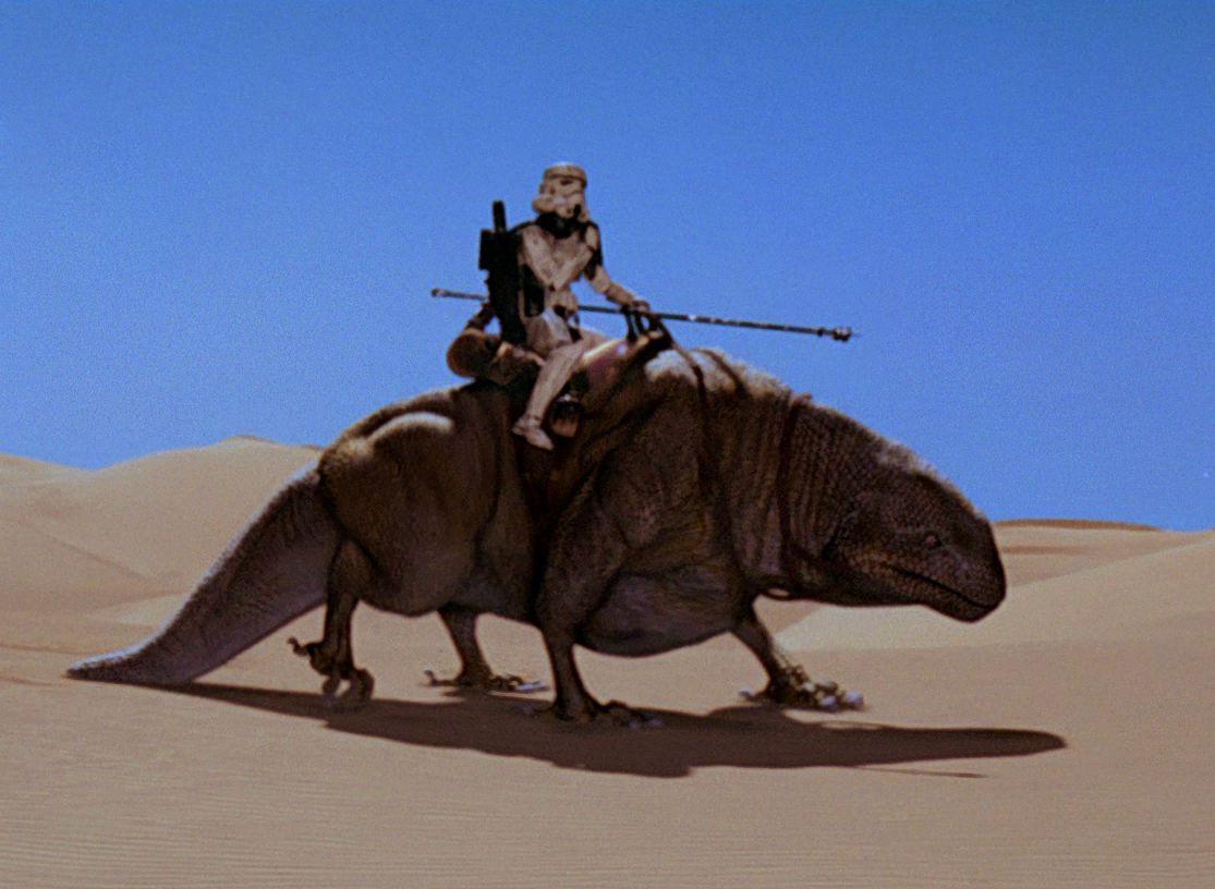 ¿Y la que usan los stormtroopers del desierto?