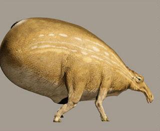 Estos animales de las llanuras de Naboo comparten nombre con una famosa jedi. ¿Sabes cual?