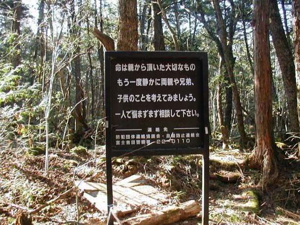 ¿Qué caracteriza el bosque Aokigahara, también conocido como el