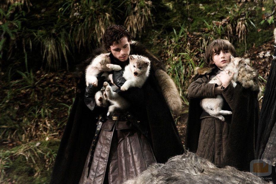 ¿Cómo se llamaban los lobos huargos de los niños Stark?