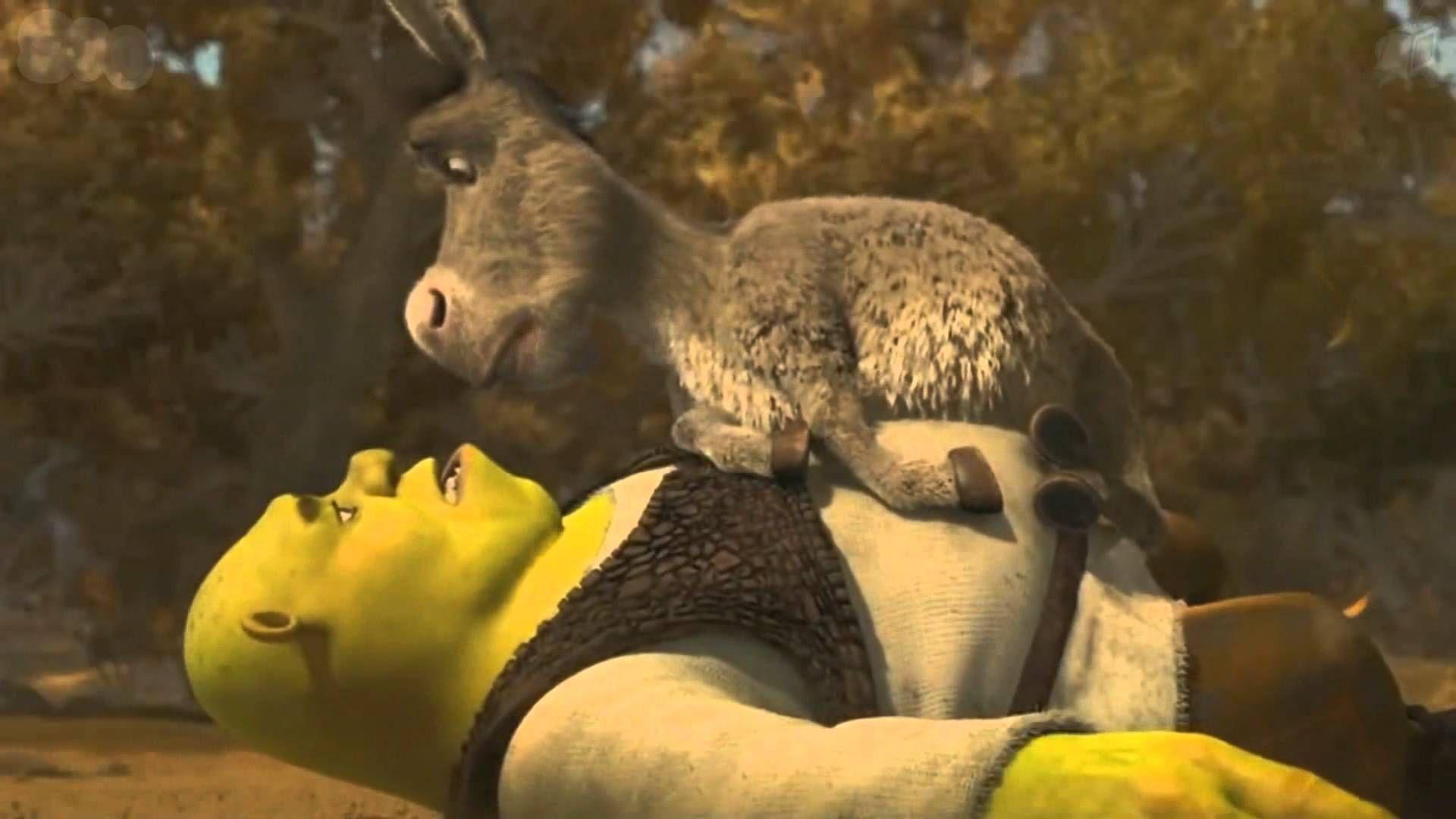 Cuando Shrek  se encuentra con Asno y lo rescata de las brujas, este no lo recuerda. ¿Cómo lo convence de que son amigos?