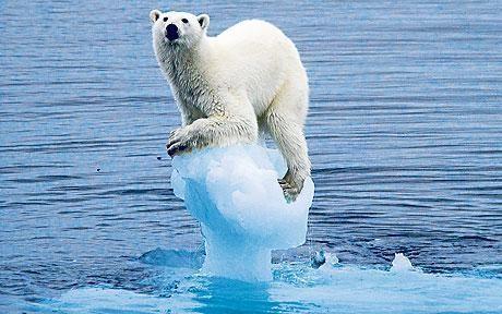 Consecuencia del cambio climático: