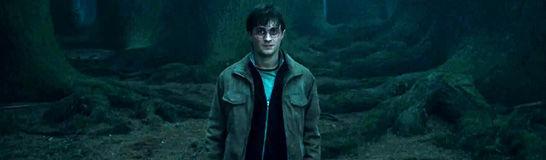 ¿Quién es el último personaje en hablar con Harry antes de entregarse a Voldemort?