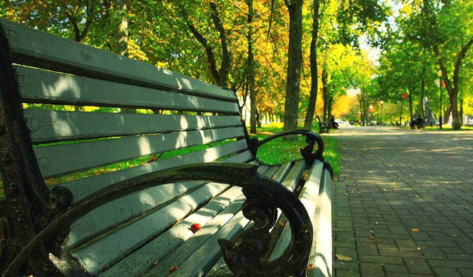 ¿Cuál es el sujeto sintáctico de la oración «a las amigas de Mariana les gusta mucho caminar por el parque»?