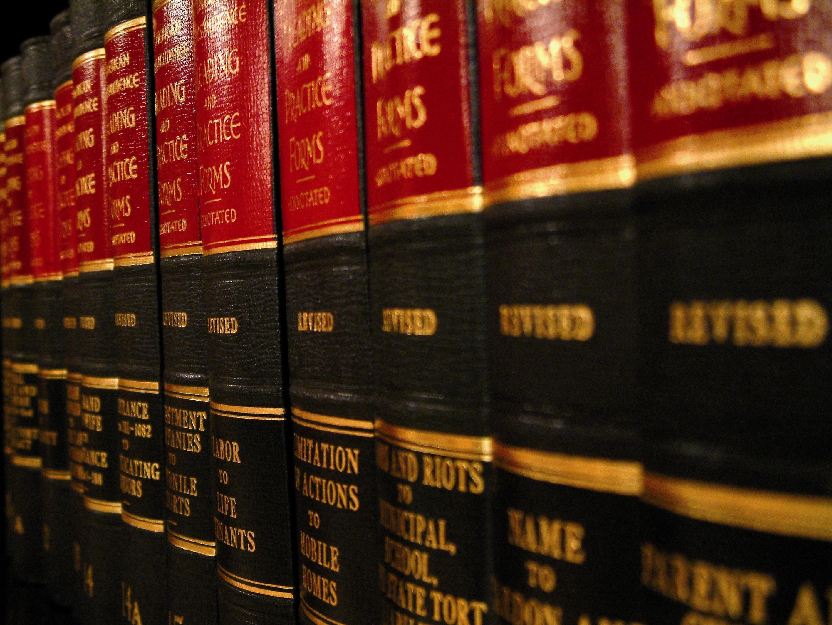 ¿En qué dos grandes ramas podemos dividir el Derecho?