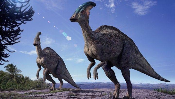 Resulta que era el grupo del herbívoro de antes; ni siquiera te han visto, solo están de paso.