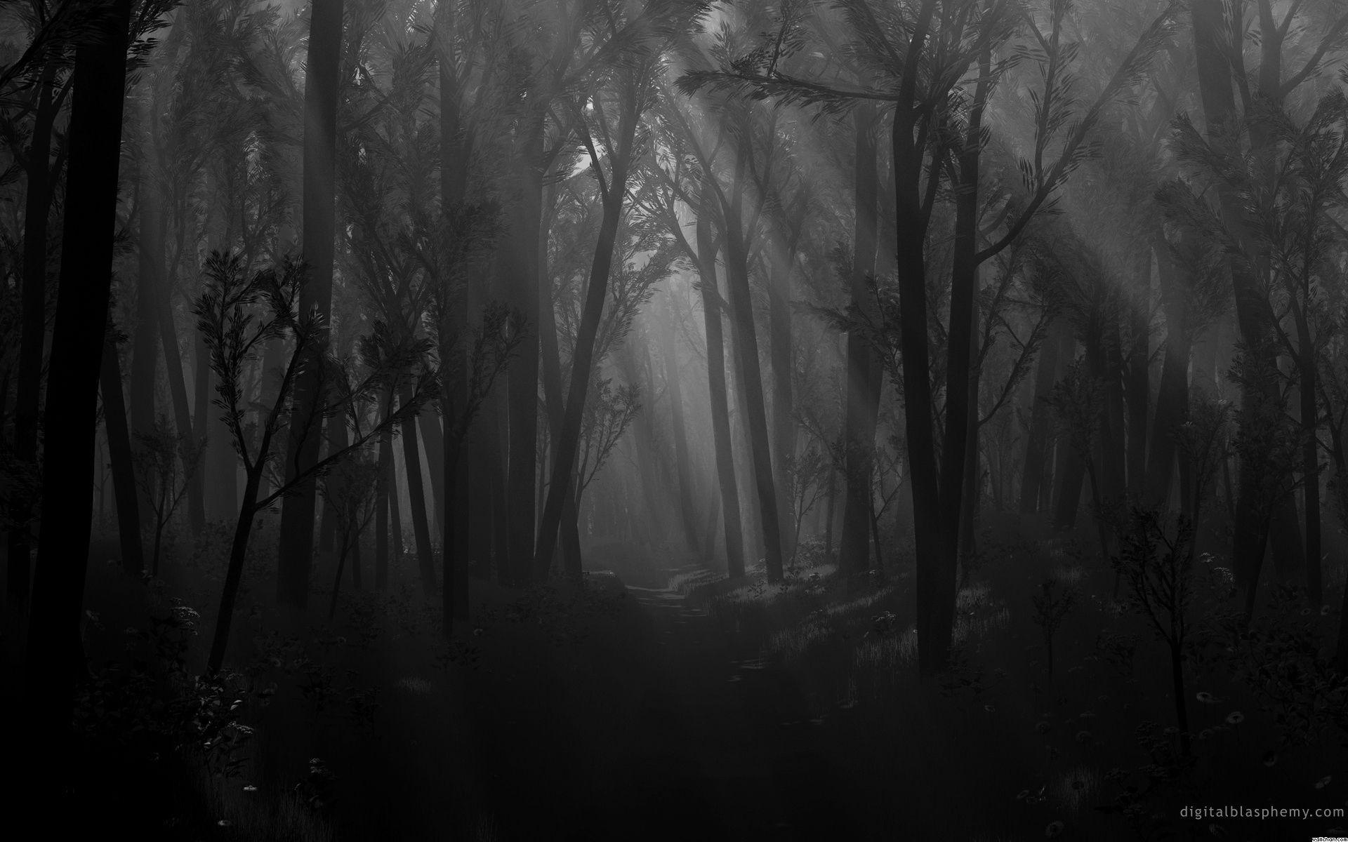 En la tarde nada ocurre, pero al caer el sol veis sombras que y os dais cuenta de que pretenden que vayáis a su encuentro.