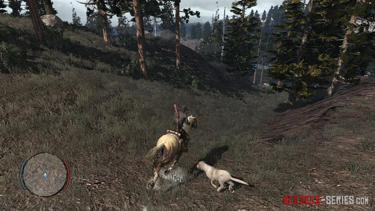 ¿Cómo se llama el perro de los Marston?