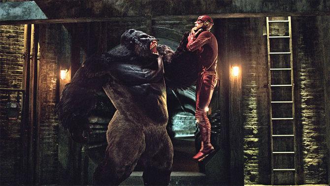 ¿Cómo se llama el Gorila que se escapa de S.T.A.R. Labs?
