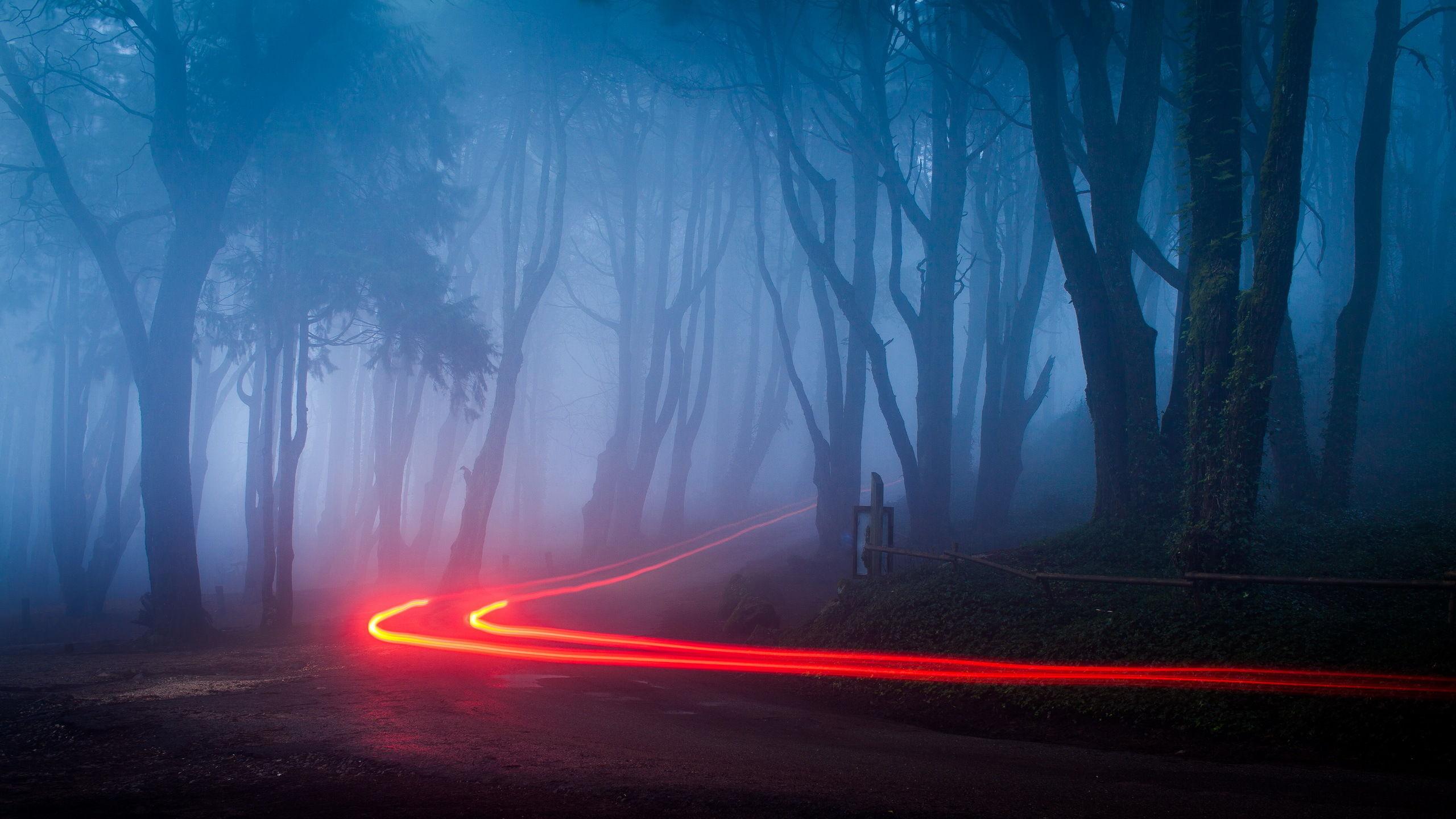 Acabas de ver un flash de una luz roja, ¿qué crees que es?