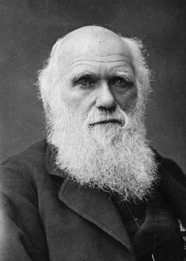 ¿Quién de los siguientes fue el primero que elaboró una teoría atómica del universo?