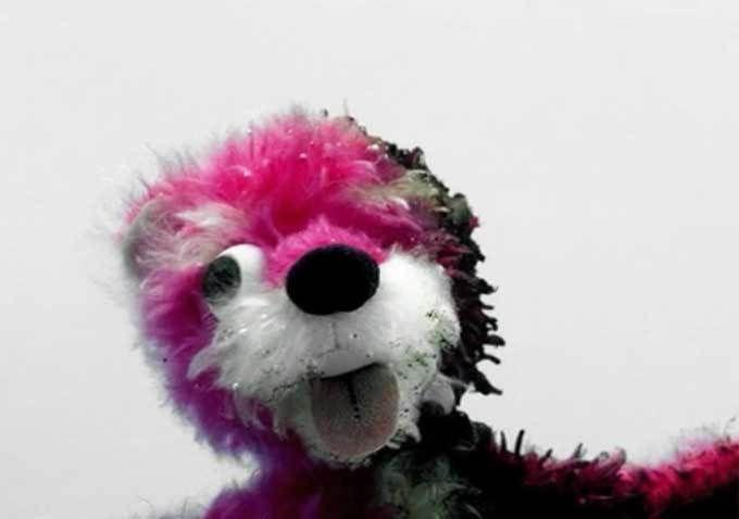 ¿A quién pertenece el famoso osito rosa?