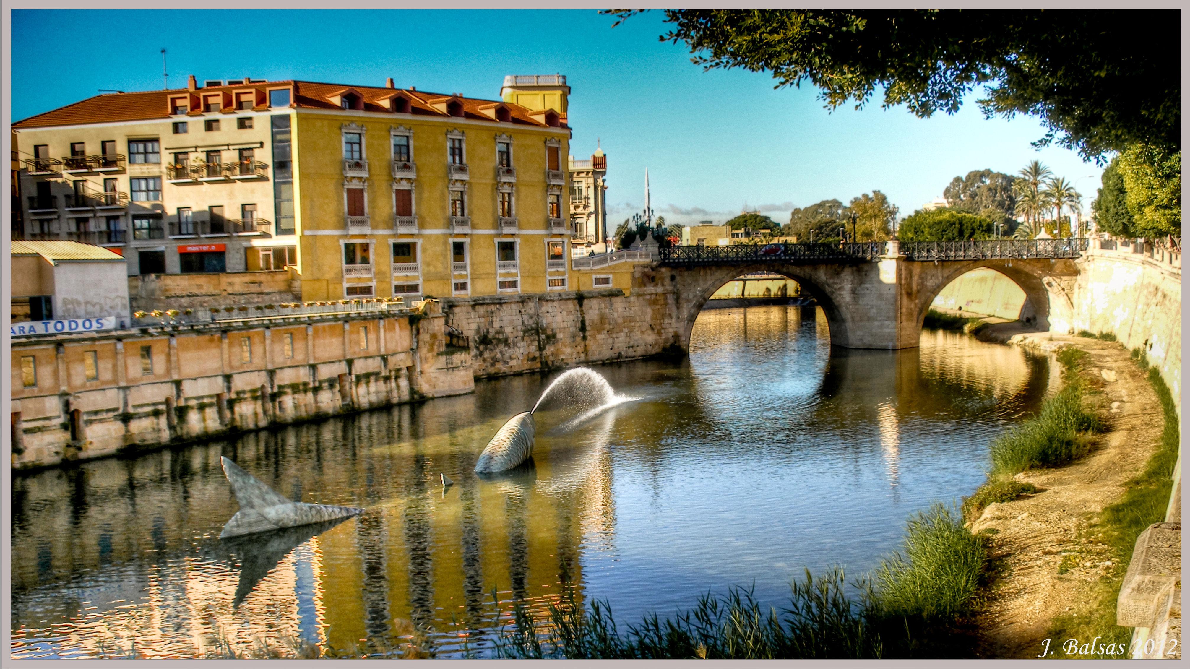 ¿Qué río es el que pasa por Murcia?