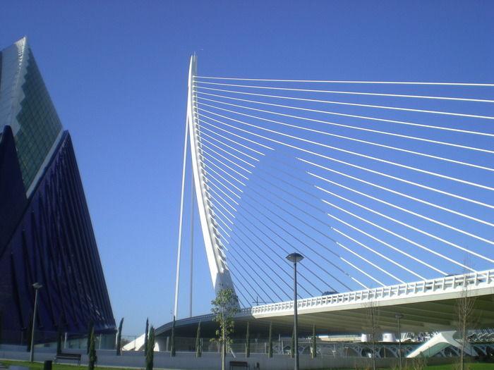 Éste es el famoso puente de l'Assut de l'or, de Santiago Calatrava. ¿Cómo es conocido popularmente?