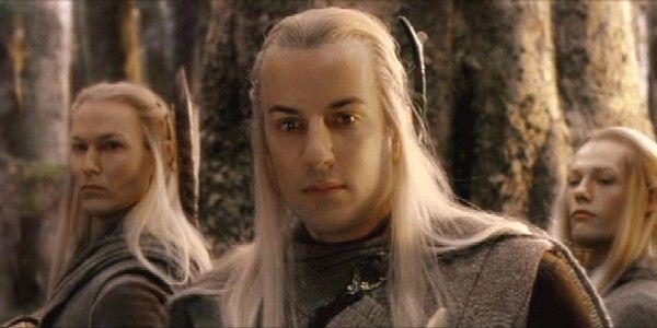 ¿Que hubiera pasado si la Compañía del Anillo no se hubiera encontrado con los elfos en el Bosque Negro?