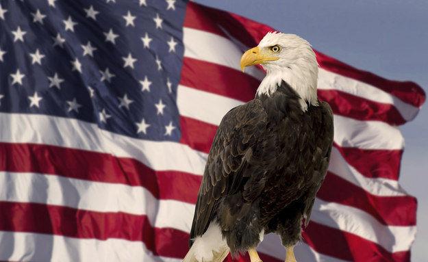 6750 - ¿Cuánto sabes de los Estados Unidos de América?