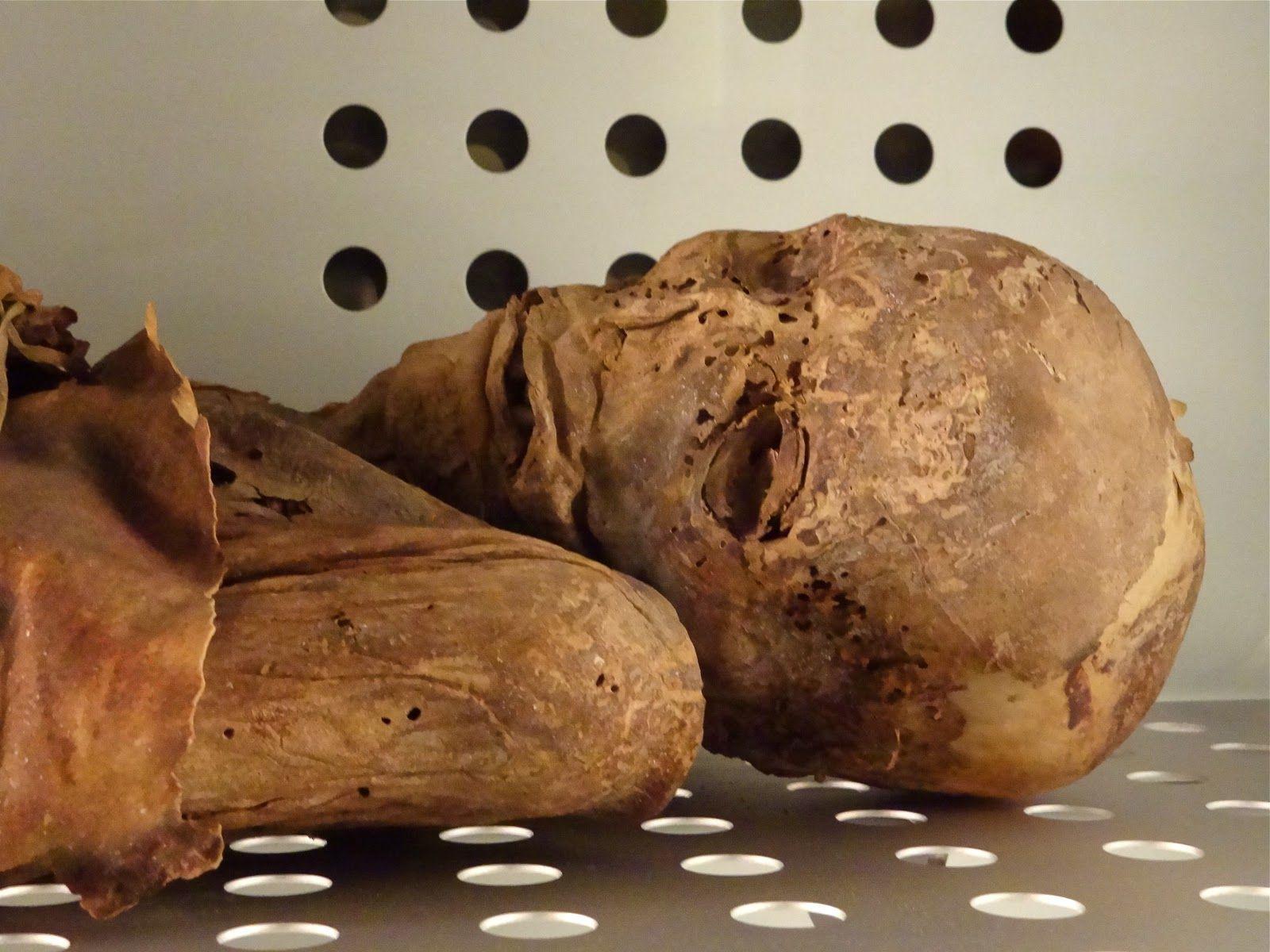 ¿Cuál es la momia guanche mejor conservada hasta la actualidad?