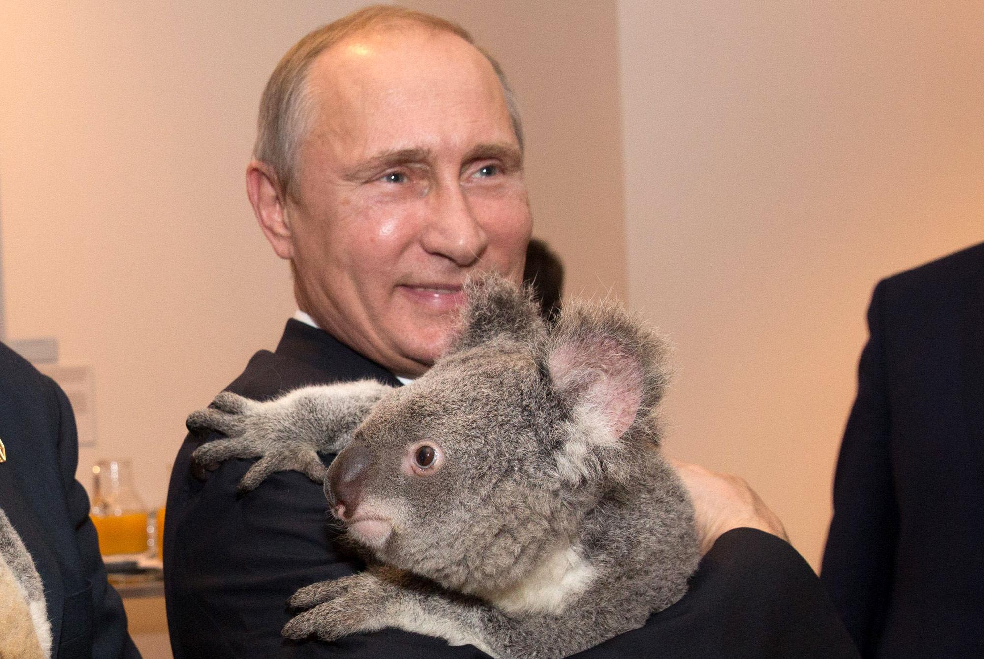 Putin va a conquistar Europa entera. Sus tropas ya están en tu país. ¿Cómo te preparas?