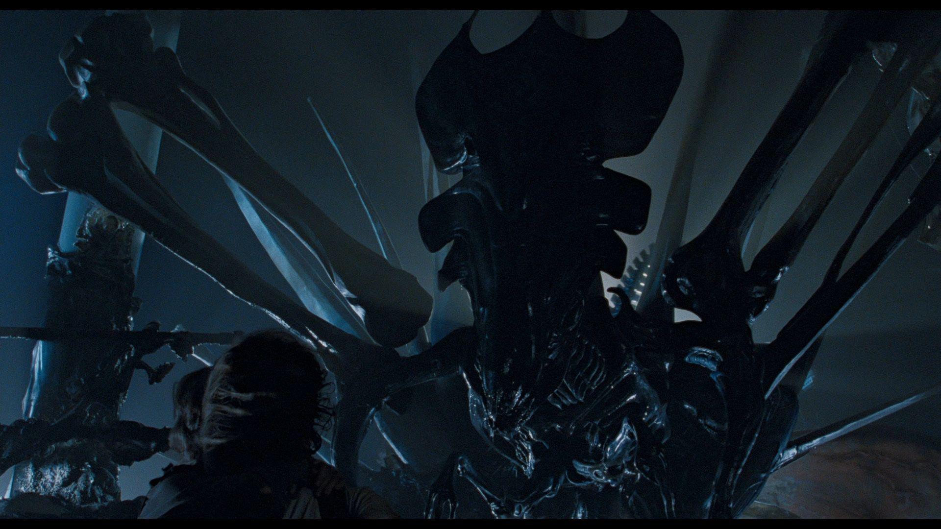 ¿Cómo muere la reina Alien en Aliens: el regreso?