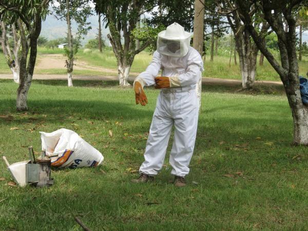 Y para terminar... ¿cómo se denomina a la profesión del individuo que cría abejas?