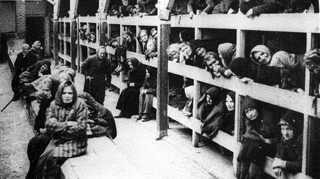 ¿Una sencilla, cuantos judíos fueron asesinados a manos de los nazis durante el Holocausto?