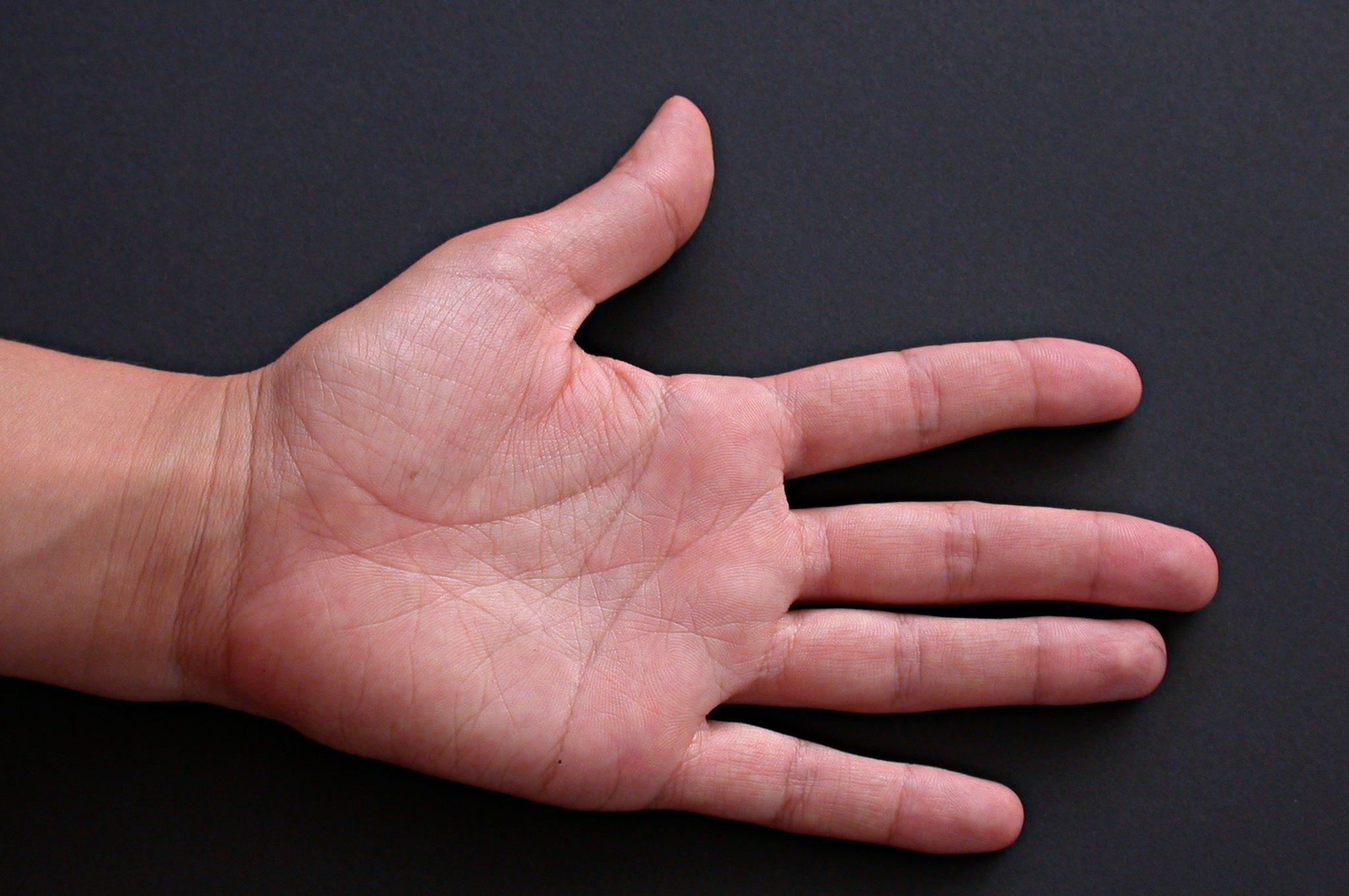(A) fer la mà, es una expresión que significa...