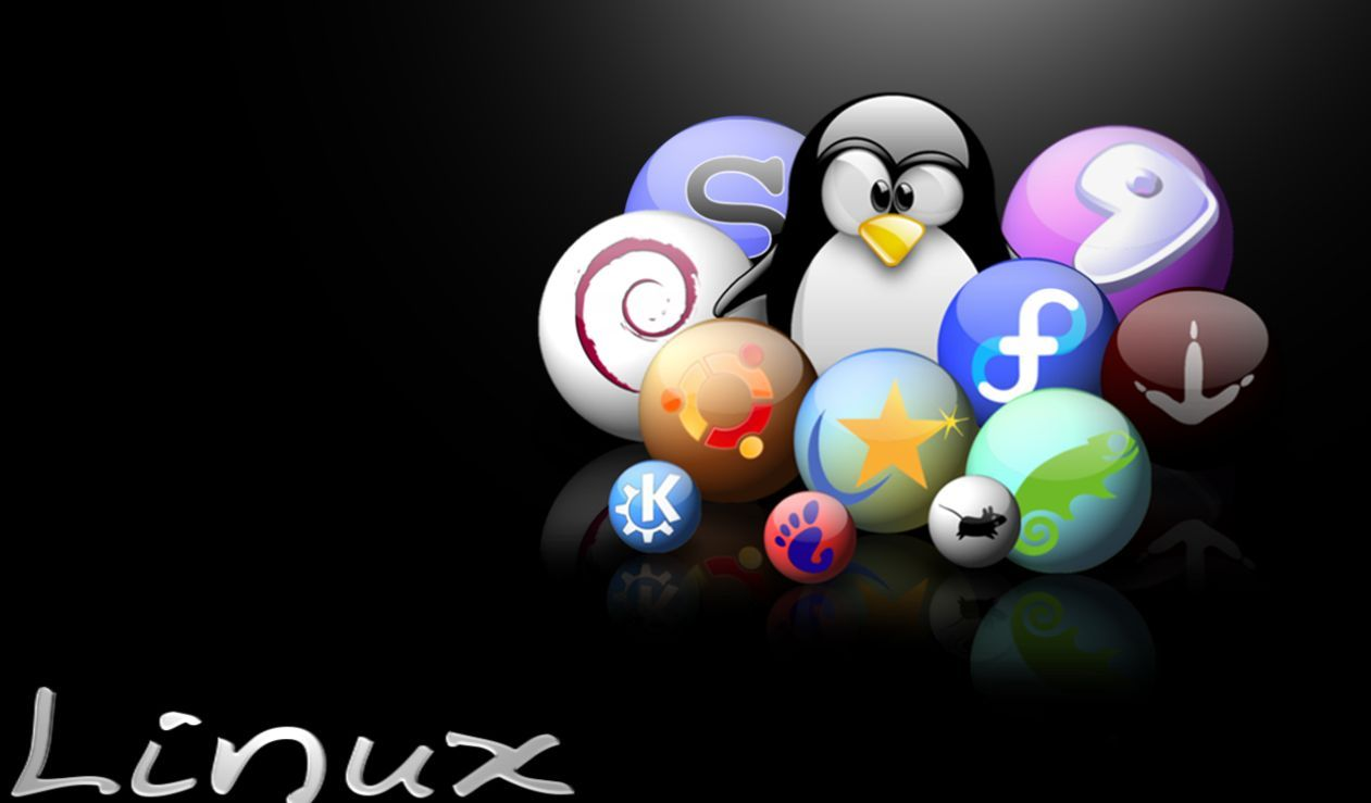 8183 - ¿Puedes relacionar estas distribuciones de GNU/Linux con su nombre?