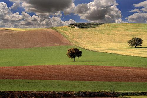 ¿Cuántas provincias forman Andalucía?