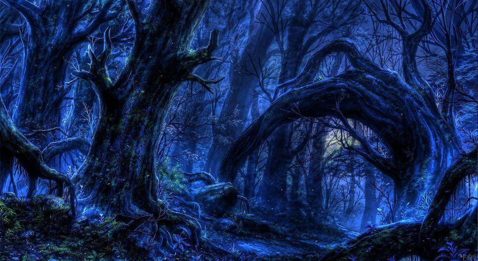 Has alcanzado el final del pasillo, ves la luz. Sales y te das cuenta que estás en mitad del bosque, solo ves un sendero.
