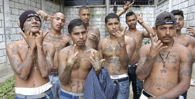 Supongamos que vas solo/a y te rodea un grupo de pandilleros buscando problemas. ¿Cuál es tu reacción?