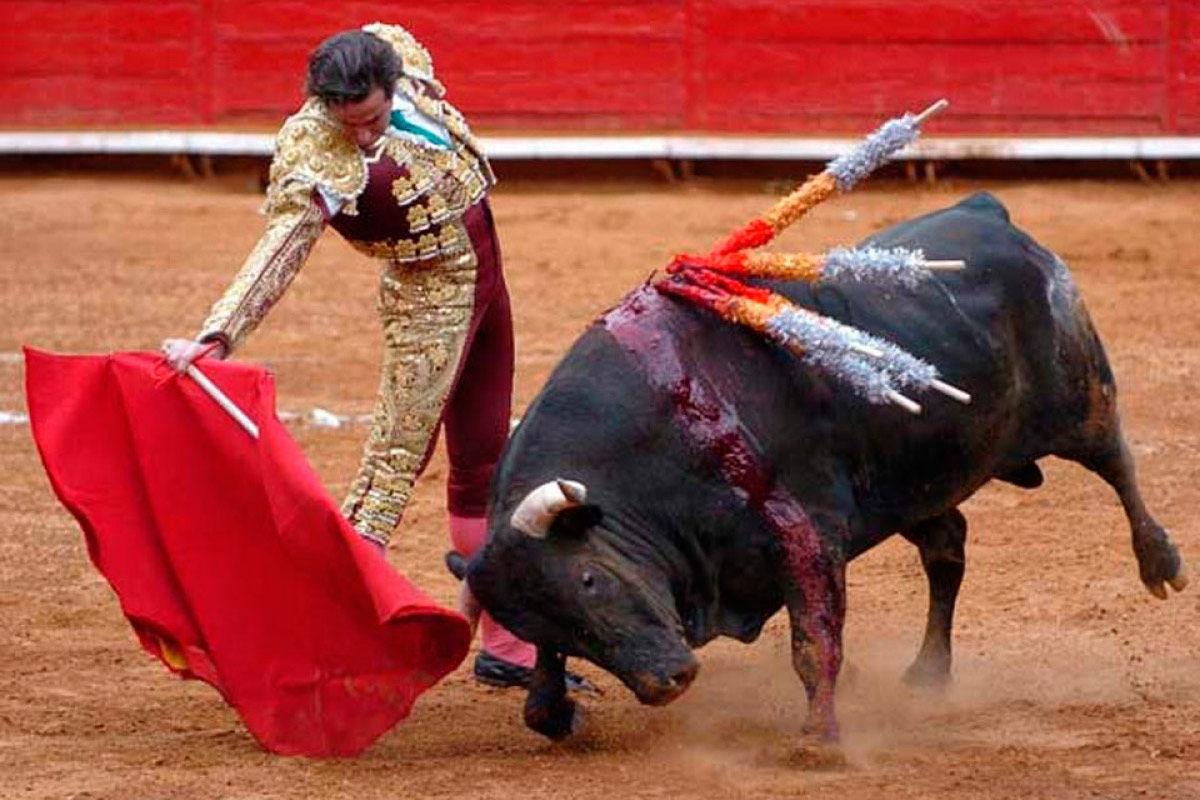 ¿Qué opinas de las corridas de toros?