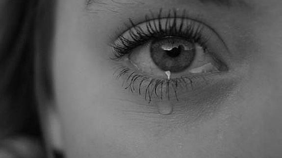 11238 - ¿Has llorado con estas películas?