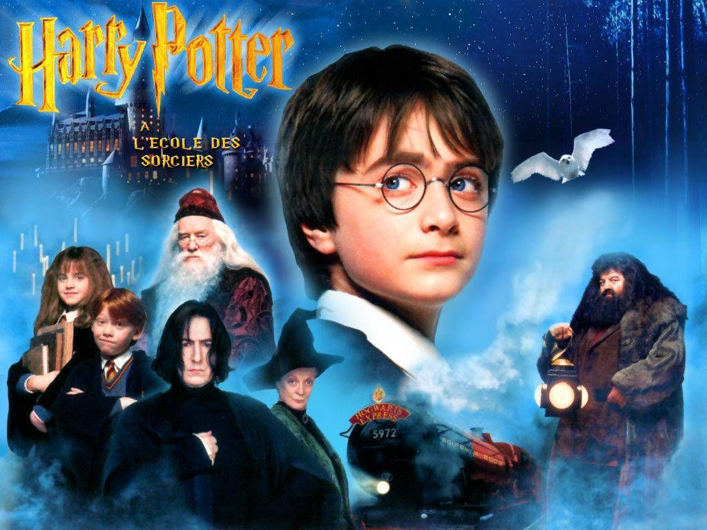 11711 - Harry Potter y la Piedra Filosofal: El Test Definitivo