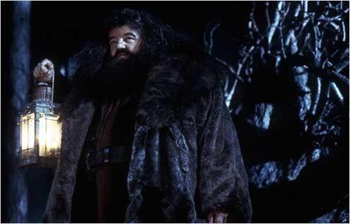 En la película, Hagrid le cuenta a Harry su historia en el Caldero Chorreante, pero, ¿sucede así en el libro?