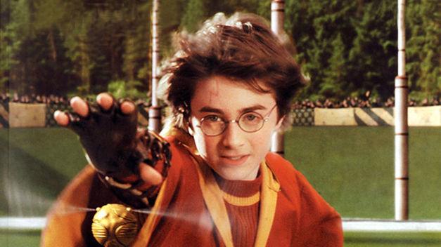 Harry juega como buscador (el más joven del siglo), ¿pero qué posición jugaba su padre James?
