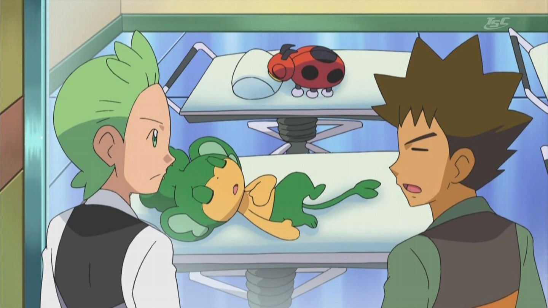 ¿Para qué es lo que está estudianto Brock?